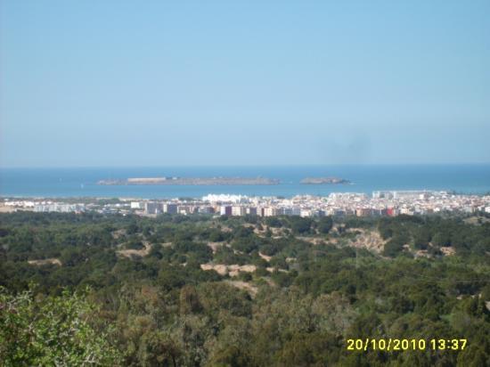 Panorama sur la ville de Essaouira