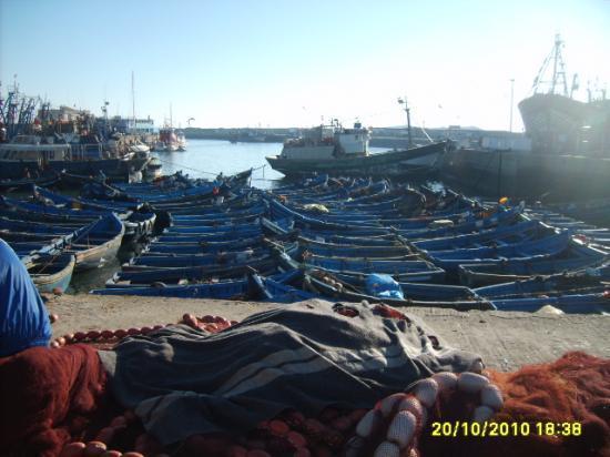 Le port de Essaouira