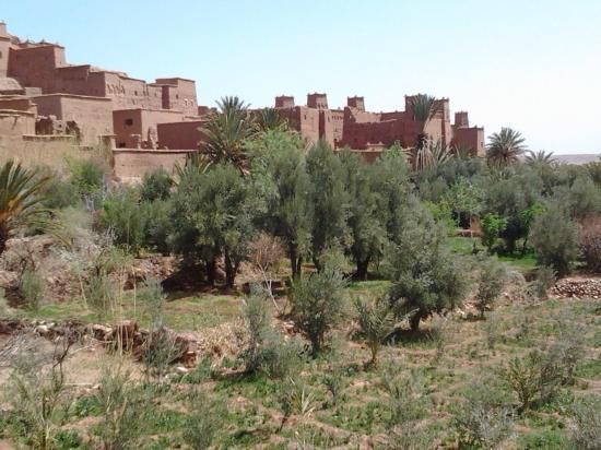 Ouarzazate 20
